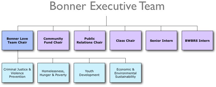 the bonner network wiki / examples of student leadership roles in